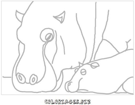 animaux-coloring_17.jpg