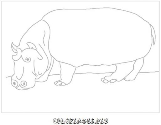 animaux-coloring_19.jpg