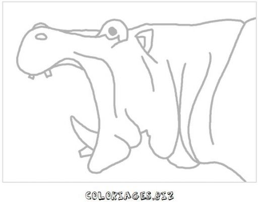 animaux-coloring_20.jpg