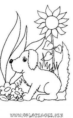 Coloriage en ligne un chien et une fleur gratuit animaux - Coloriage en ligne animaux ...