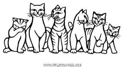Coloriages chats page 1 animaux - Chaton a colorier ...