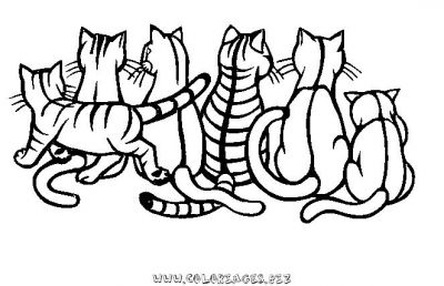 Coloriage Famille Chat.Coloriages Chats Page 1 Animaux