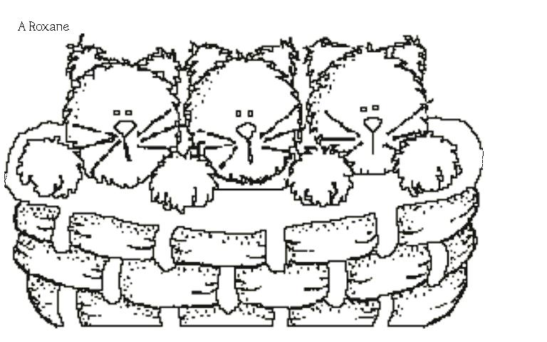 Coloriage de chat mignon - Dessin a colorier chat chaton ...