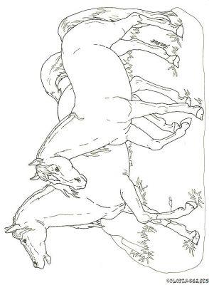 Coloriages cheval page 12 animaux - Dessin de poulain a imprimer ...