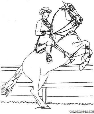 Cheval mont coloriage - Dessin de cheval magnifique ...