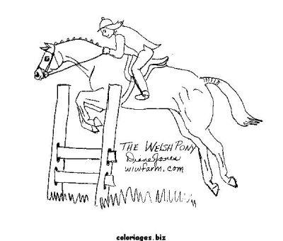 Coloriages cheval page 9 animaux - Coloriage cheval qui saute ...