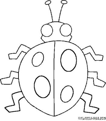 coloriage-coccinelle-3.jpg