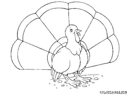 Faisan en dessin - Dessin cochon ...