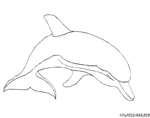 Coloriages dauphins page 2 animaux - Dauphin a dessiner ...