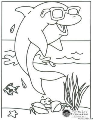 Coloriages page 39 - Jeux de coloriage de dauphin ...