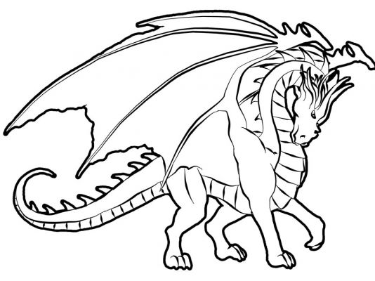 Coloriages Dragons Colorier Page 1 Animaux