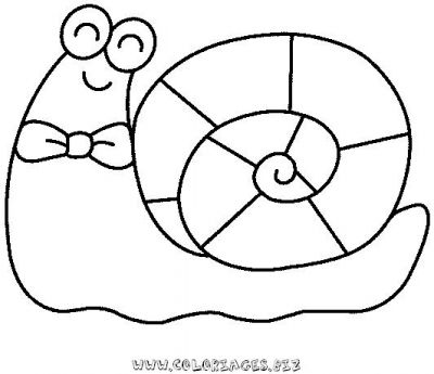 17_coloriage_escargot.JPG