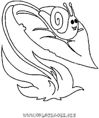20_coloriage_escargot.JPG