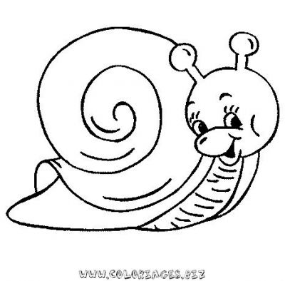30_coloriage_escargot.JPG
