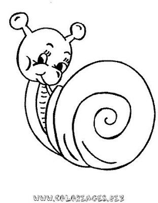31_coloriage_escargot.JPG
