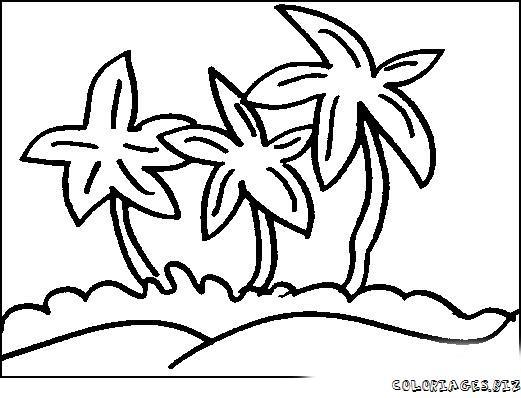 Dessin palmier coloriage - Palmier dessin ...