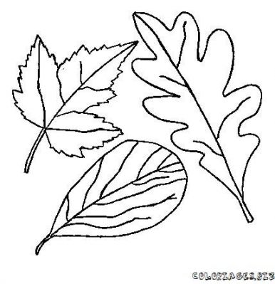 coloriage-feuille-foret-12.jpg