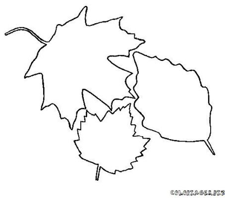 coloriage-feuille-foret-13.jpg
