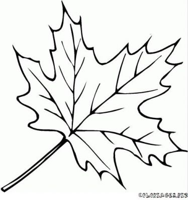 coloriage-feuille-foret-3.jpg