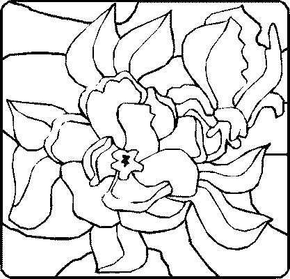 Dessin de fleur - Belle fleur a dessiner ...