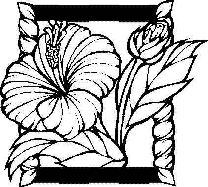 Dessin des fleurs coloriage de fleurs - Fleurs en dessin ...