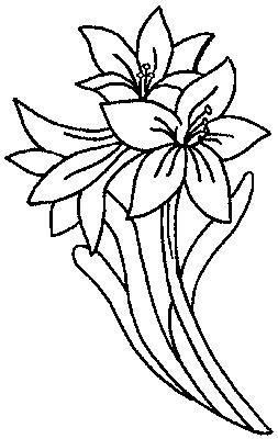 Coloriage fleur simple - Fleur simple dessin ...