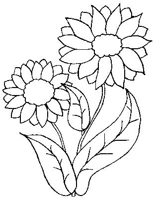 coloriages fleurs et frises page 6 ecologie. Black Bedroom Furniture Sets. Home Design Ideas