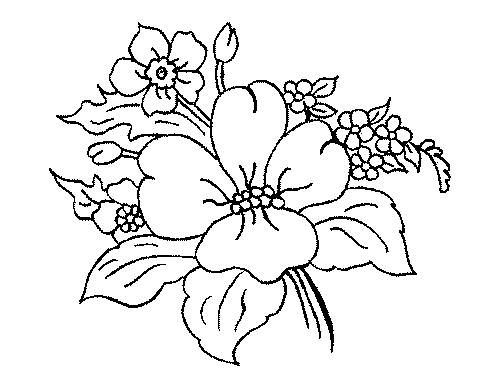 Coloriages Fleurs et frises page 7 Ecologie