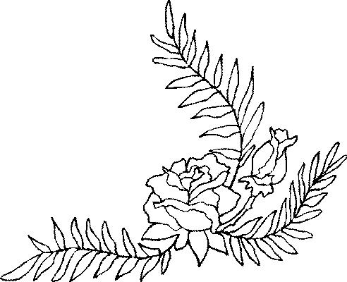 Coloriages fleurs et frises page 5 ecologie - Coloriage fleurs et plantes a imprimer ...
