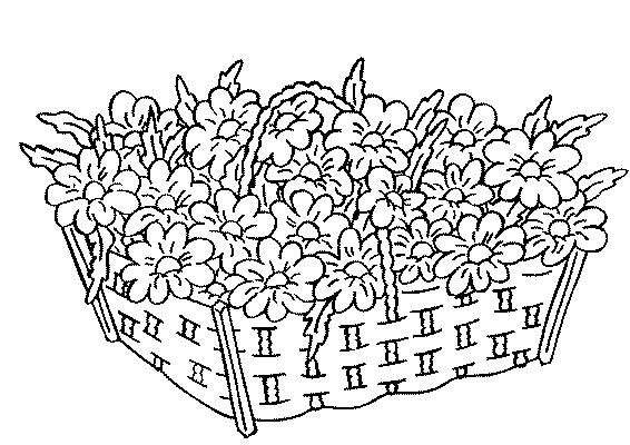 Dessin des fleurs - Coloriage de fleur ...
