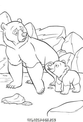 coloriage_frere_des_ours_05.jpg