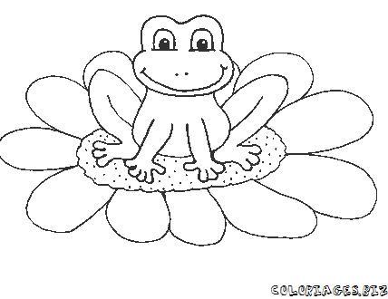Comment dessiner grenouille - Coloriage de grenouille ...