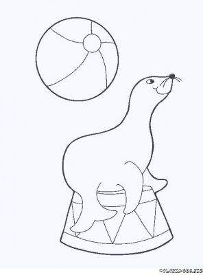 Coloriages otarie page 1 animaux - Dessin otarie imprimer ...