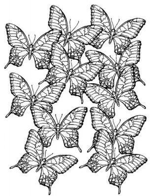 Coloriages papillons page 4 animaux - Jeux de coloriage de papillon ...