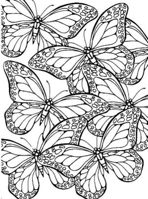 Coloriages papillons page 4 animaux - Papillon imprimer ...