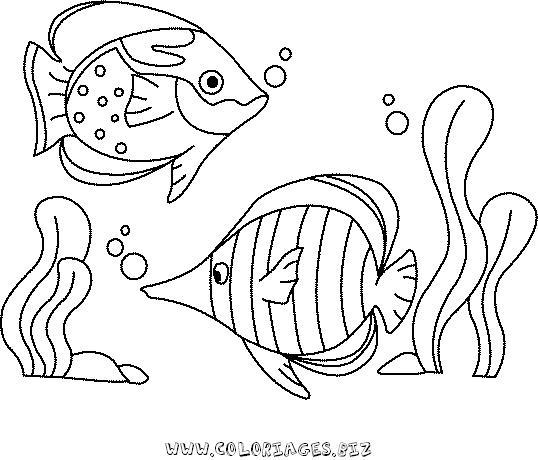 Coloriages mer et poissons page 1 animaux - Coloriage de poisson ...