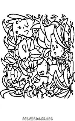 coloriage-pokemon-24.jpg