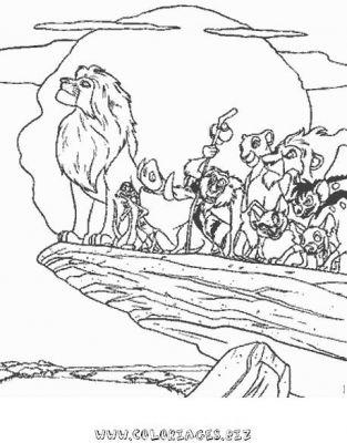 Colorionscom Galerie Le Roi Lion 23 Le Roi Lion De Simba