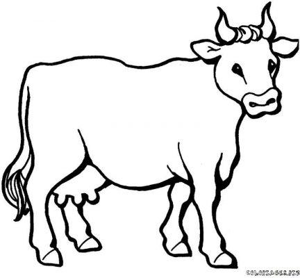 Comment dessiner une vache - Dessin d une vache ...